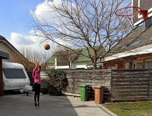 Športne aktivnosti od doma